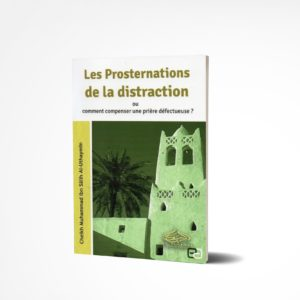La Prosternation De La Distraction